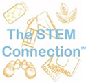 The STEM Connection